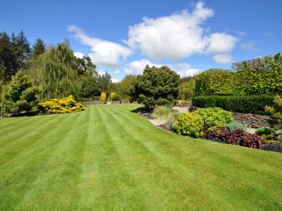 a beautiful English country garden, a beautiful lawn edged by colourful boarders.